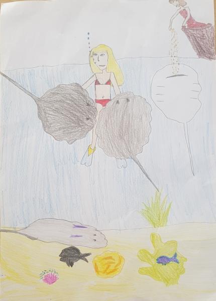 Dessin d'Agathe sur sa plongée avec les raies